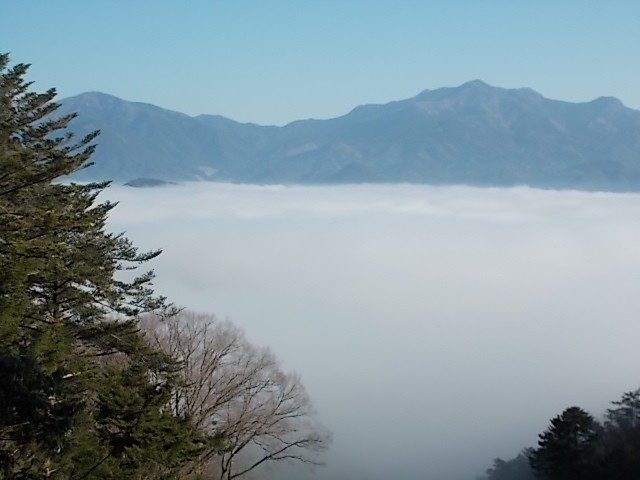 45番岩屋寺への八丁坂からの雲海  2016年3月
